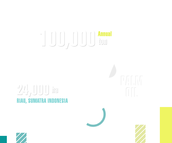 Indonesian palm plantation produces 100,000 tons of palm oil per year and occupies an area of 24,000ha, which is 40 percent of the size of Seoul.